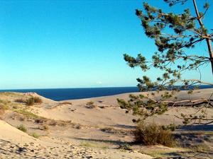 Прибалтийский пляж и дюны
