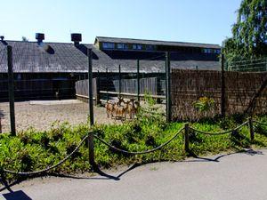 Территория зоопарка в Таллине