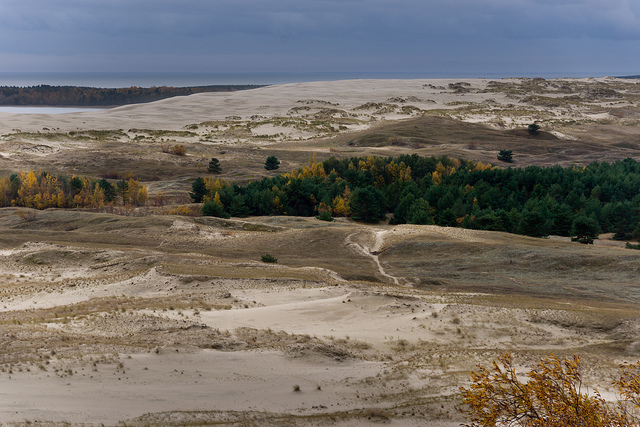 Песчаные дюны на Куршской косе.