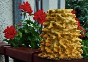 Традиционный торт на свадьбе в Литве - Шакотис