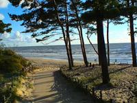 Паланга в теплое время года, берег